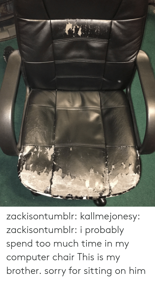 Sorry, Too Much, and Tumblr: zackisontumblr:  kallmejonesy:  zackisontumblr:  i probably spend too much time in my computer chair  This is my brother.   sorry for sitting on him