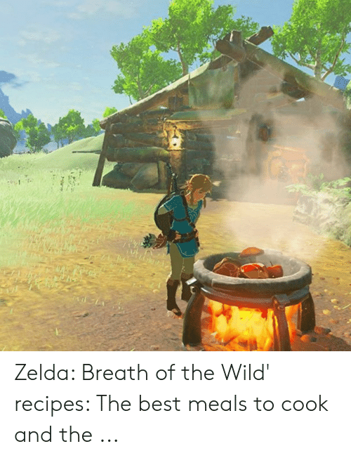 Zelda Breath of the Wild' Recipes the Best Meals to Cook and