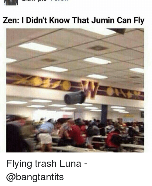 Zen I Didn T Know That Jumin Can Fly Flying Trash Luna Fandom