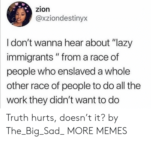 "Dank, Lazy, and Memes: zion  @xziondestinyx  I don't wanna hear about ""lazy  immigrants "" from a race of  people who enslaved a whole  other race of people to do all the  work they didn't want to do Truth hurts, doesn't it? by The_Big_Sad_ MORE MEMES"